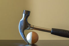 Hammer and egg Stock Images