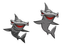 Hammer fish shark Royalty Free Stock Images