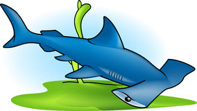 Hammer-Haifisch Lizenzfreie Stockfotografie