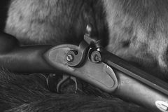 Hawken Style Rifle - B&W. The hammer lock of a hawken style rifle is depicted on a variety of pelts in B&W Stock Images