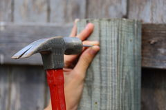 Hammer and Nail Stock Photos