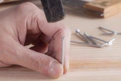 Hammer and nail Royalty Free Stock Image