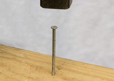 The hammer in a nail Royalty Free Stock Images