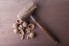 Hammer and nuts Stock Image