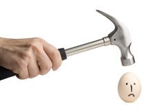 Hammer ready to smash an egg. Hammer to smash an egg - concept photo illustrating danger and brittleness of things Royalty Free Stock Image