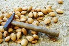 Almonds with shells cracked with hammer. A hammer stands on a pile of shelled almonds which some of them cracked Royalty Free Stock Image