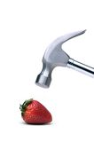 Hammer & Strawberry. Hammer About To Crush A Strawberry (Isolated Royalty Free Stock Photography