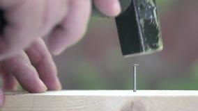 A hammer striking a falling nail. Macro. A narrow zone of sharpness.