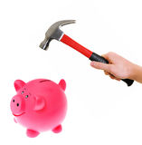 Hammer about to smash piggy bank. Hand holding a hammer about to smash piggy bank Stock Image