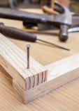 Hammer und Nagel Lizenzfreie Stockbilder