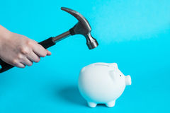 hammer which is raised above a white piggy bank Royalty Free Stock Photo