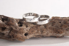 Hammered Rings on Driftwood Stock Photography
