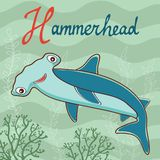 hammerhead Arkivfoto