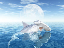 Hammerhead with Moon Royalty Free Stock Photography