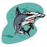 Hammerhead shark. Vector art of a hammerhead shark searching for prey royalty free illustration