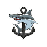 Hammerhead Shark and Anchor heraldic icon. Hammer-head Shark and Anchor icon. Heraldic emblem. Vector nautical shield for heraldry template, t-shirt, shield sign Stock Photo