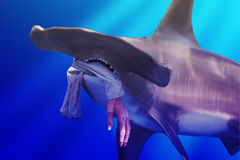 Hammerhead Shark with Hand. A faux Hammerhead shark swimming in ocean with a with human hand in mouth, hand hanging from torn shirt sleeve Stock Images