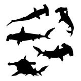 Hammerhead shark set vector. Hammerhead shark set of silhouettes vector vector illustration