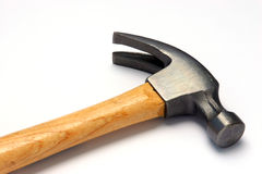 hammerhead4536 免版税库存图片