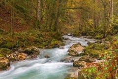 Hammersbach creek. Near Grainau, Garmisch Partenkirchen, in fall Royalty Free Stock Images