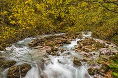Hammersbach creek. Near Grainau, Garmisch Partenkirchen, in fall Stock Images