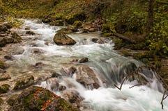 Hammersbach creek. Near Grainau, Garmisch Partenkirchen, in fall Royalty Free Stock Photos
