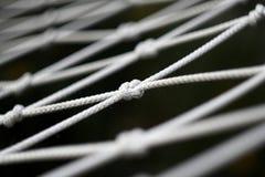 hammock мое Стоковые Изображения