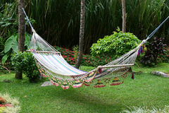 Free Hammock Stock Photography - 1457502