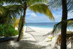 Hammock. Under palm trees at a beach in the Maldives royalty free stock photo