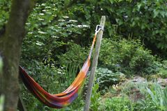 Hammock. Brightly colored hammock in temperate garden royalty free stock photos