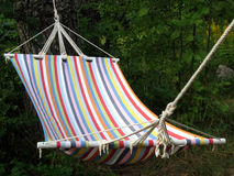 Hammock. With forest background, for some reading Stock Photo