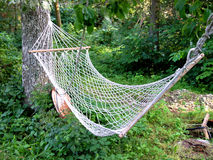 Hammock. In the garden Stock Images