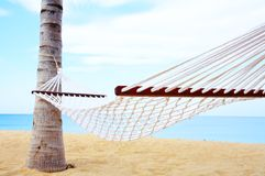 Hammock. View of nice white hammock hanging between two palms stock photos