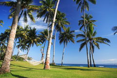 Hammock alla spiaggia immagini stock