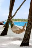 Hammock on the beach Stock Image