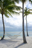 Hammock on the beach. Hammock hanging in palm trees on the beach Royalty Free Stock Images