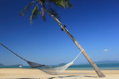 Hammock. On beach with coconut tree Stock Photography