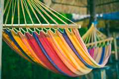 Hammock at the Beach. Colored Hammock at the Beach