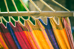 Hammock at the Beach. Colored Hammock at the Beach Stock Photo