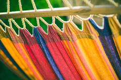 Hammock at the Beach. Colored Hammock at the Beach Royalty Free Stock Photography