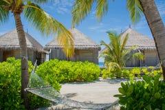 Hammock on the beach at Maldives. Hammock on the tropical beach Royalty Free Stock Photos