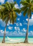 Hammock in a beach in Tikehau. Tahiti stock photo