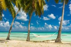 Hammock in a beach in Tikehau. Tahiti stock image