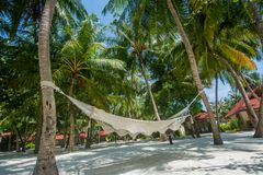 Hammock at the beautiful tropical forest at Maldives Stock Photography