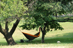 The hammock and the bike under a big tree royalty free stock images