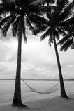 Hammock on coconut trees in tropical Island Royalty Free Stock Photography