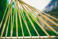 Hammock cords. At the Beach stock image
