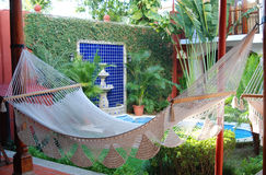 Hammock in a Courtyard Stock Photos