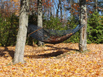 Hammock in the fall Royalty Free Stock Photos