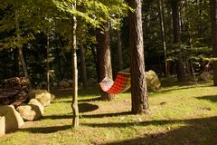 Hammock in the forest. Beautiful garden in Karpacz, sunny afternoon in autumn Stock Image